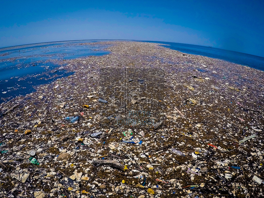 A long, floating 'river' of trash between the island of Roatan, Honduras and the mainland.