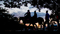 BALTIMORE, MD - MAY 18:  Always Dreaming heads to the track to exercise, followed by Trainer Todd Pletcher, in preparation for the Preakness Stakes this Saturday at Pimlico Race Course on May 18, 2017 in Baltimore, Maryland.(Photo by Scott Serio/Eclipse Sportswire/Getty Images)