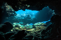 A scuba diver's view from an underwater cave at Shark's Cove, North Shore, O'ahu.