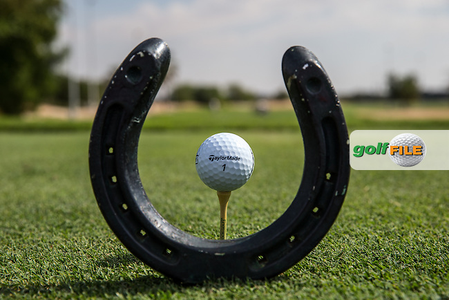 Horseshoe tee, The Track at The Meydan Golf Club, Dubai, United Arab Emirates.  31/01/2016. Picture: Golffile | David Lloyd<br /> <br /> All photos usage must carry mandatory copyright credit (&copy; Golffile | David Lloyd)