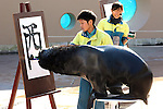 """January 3, 2017, Tokyo, Japan - 15-year-old male sea lion """"Leo"""" writes the word """"Rooster"""" in Chinese character as part of a New Year's attraction at the Hakkeijima Sea Paradise aquarium in Yokohama  on Tuesday, January 3, 2017. Leo wrote """"Rooster"""" to celebrate the """"Year of Rooster"""" of Chinese zodiac.  (Photo by Yoshio Tsunoda/AFLO) LWX -ytd-"""