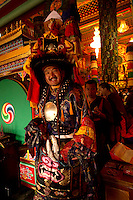 Head priest Buddhist Lama Monk from the Himalayan belt, during Losar celebrations