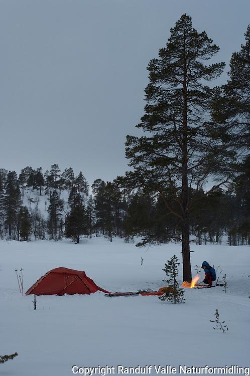 Bål ved teltleir i Femundsmarka --- Campfire and tent