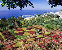 Portugal, Madeira, Funchal: Botanical Gardens | Portugal, Madeira, Funchal: im Botanischen Garten