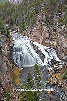 67545-09706 Gibbon Falls at Yellowstone National Park, WY