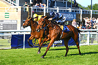 Winner of The Sharp's Doom Bar Handicap Rainfall (blue) ridden by Harry bentley and trained by Henry Candy during Evening Racing at Salisbury Racecourse on 25th May 2019