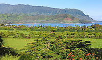 A lush view from an overlook point of Hanalei, Kaua'i, with Mt. Makana (a.k.a. Bali Hai) at the right end of the mountains.