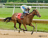 Edyanne winning at Delaware Park racetrack on 6/14/14