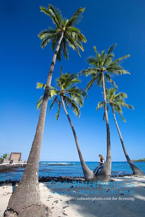Woman visitor sitting on Coconut Palms, Cocos nucifera, Pu`uhonua o Honaunau or Place of Refuge National Historical Park, Honaunau, Big Island, Hawaii