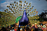"silleteros carries a real turkey decorate with flowers while he attends the traditional ""Silletero"" parade during the Flower Festival in Medellin August 7, 2012. Photo by Eduardo Munoz Alvarez / VIEW."