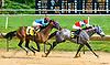 Stilburnin winning at Delaware Park on 7/29 /17