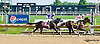 Condo Closing winning at Delaware Park on 9/11/13