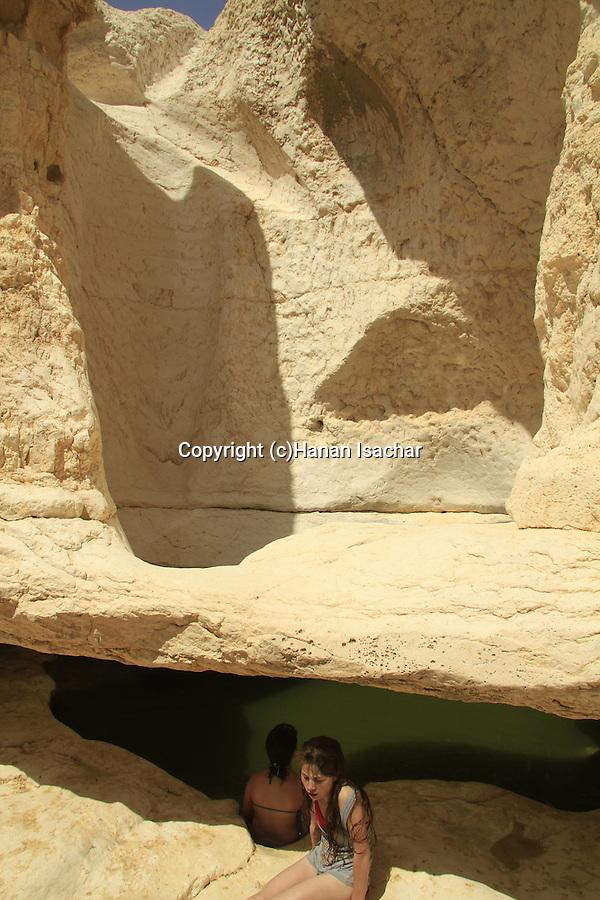 Israel, Negev, Zarhan waterhole in Wadi Zarhan