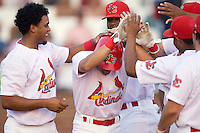 Alex Castellanos (5) of the Johnson City Cardinals is mobbed by his teammates following his solo home run in the 3rd inning versus the Kingsport Mets at Howard Johnson Field in Johnson City, TN, Thursday July 3, 2008.