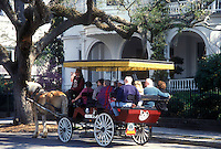 AJ1595, Charleston, South Carolina, horse-drawn carriage, Carriage tours of historic houses along Meeting Street in Charleston, South Carolina.