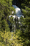 Falls Creek Falls, Gifford Pinchot National Forest