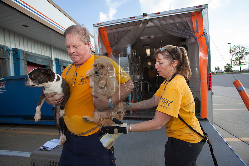 National Disaster Animal Response Team members Dave Hall (left) and Lee Smith transport a dog to a temporary shelter after a raid on a puppy mill in Johnston, SC on Tuesday, Sept. 11, 2012. HSUS workers found over 200 dogs, nine horses and 30-40 fowl. (Smith: 704-363-8887 / Hall: 919-614-5278)