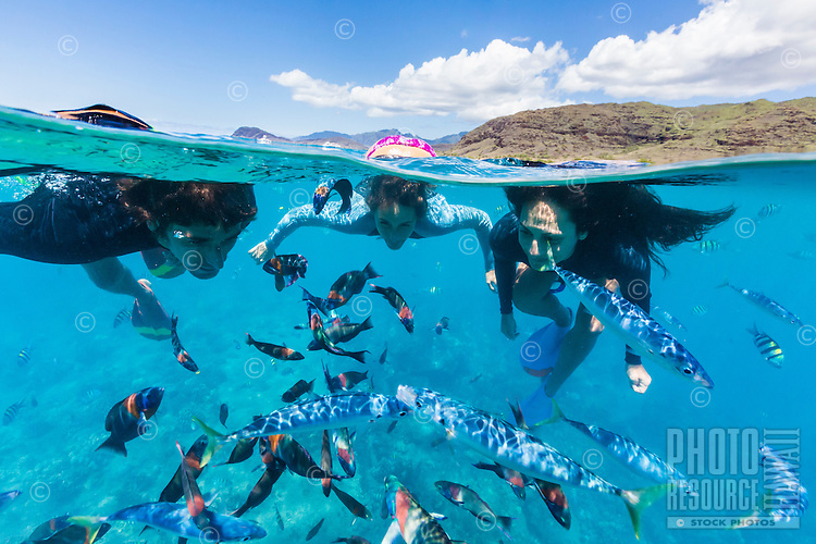 Tourists swimming with tropical fish off of Electric Beach in West O'ahu.