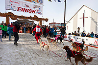 Rookie musher Jane Faulkner runs in front of her dogs as she crosses the finish line in Nome during the 2010 Iditarod