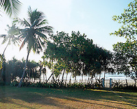 The garden leads down to Mahawella Beach fringed with palm trees