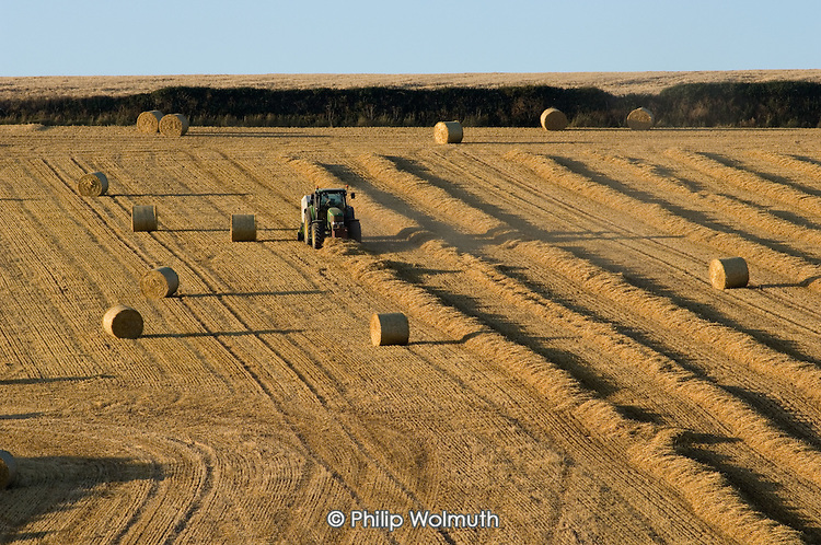 Baling straw after the wheat harvest on a farm in Cornwall.