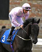 Oofy Prosser ridden by Mitch Godwin goes down to the start of The Peter Symonds Catering Claiming Stakes        during Afternoon Racing at Salisbury Racecourse on 16th May 2019
