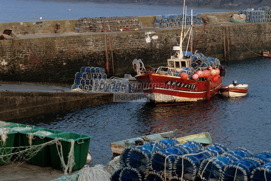 Europe/France/Bretagne/29/Finistère/Le Conquet: Bateau sur le port