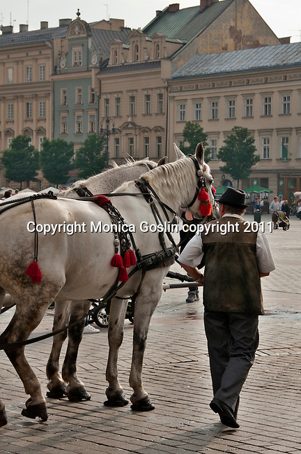 A man with his horse carriage in the Main Market Square in Krakow, Poland. The Main Market Square in Krakow, Poland in the largest medieval square in Europe and dates back to the 13th century