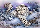 Kayomi, REALISTIC ANIMALS, paintings, snow leopard, SnowForest_M, USKH142,#A# realistische Tiere, realista, illustrations, pinturas