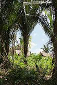 Pakissamba Village (Juruna), Xingu River, Para State, Brazil.