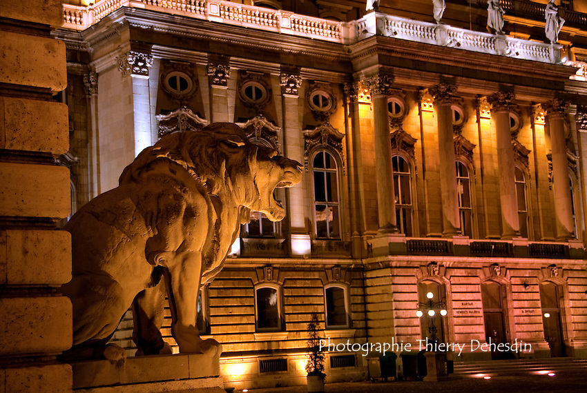 Central Europe, Hungary, Budapest 2007/04. On Castle Hill.  Buda Castle (Budai Vár) the historical castle of the Hungarian kings: near a lion statue, inside the cour d'honneur.