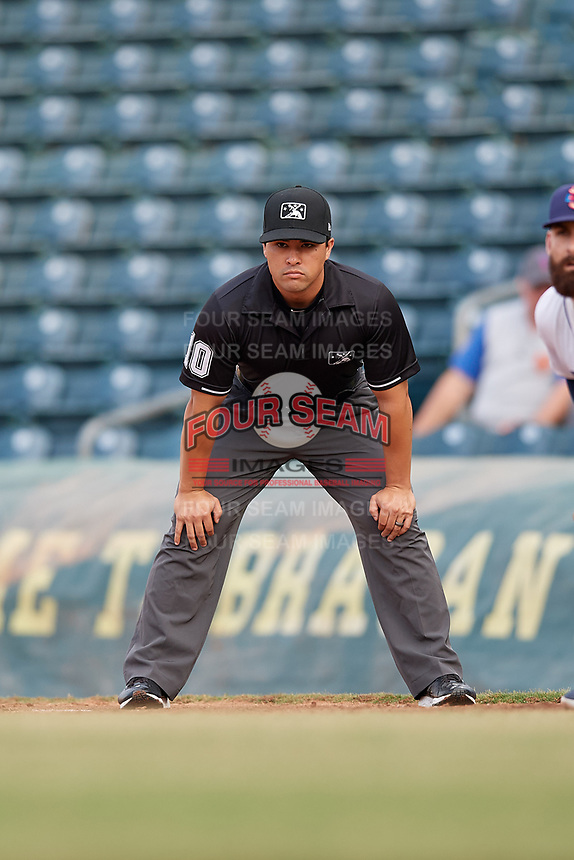 Umpire Cody Clark during a Southern League game between the Mobile BayBears and Jacksonville Jumbo Shrimp on May 28, 2019 at Baseball Grounds of Jacksonville in Jacksonville, Florida.  (Mike Janes/Four Seam Images)