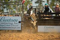 SEBRA - Windsor, VA - 9.16.2017 - Bulls & Action