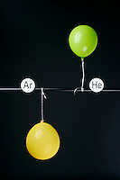 HELIUM AND ARGON FILLED BALLOONS<br /> (Variations Available)<br /> The Two Balloons Are Filled To The Same Volume<br /> After 4 hours the helium filled balloon is smaller than the Argon filled balloon. Helium effuses out of the balloon faster than Argon.  Light atoms or molecules effuse through the pores of the balloons faster than heavy atoms or molecules.