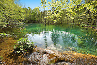 One of Plitvice mineral water lakes . Plitvice ( Plitvika ) Lakes National Park, Croatia. A UNESCO World Heritage Site