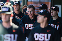 Oregon State Beavers first baseman Zak Taylor (16) is congratulated by teammates during a game against the Gonzaga Bulldogs on February 16, 2019 at Surprise Stadium in Surprise, Arizona. Oregon State defeated Gonzaga 9-3. (Zachary Lucy/Four Seam Images)