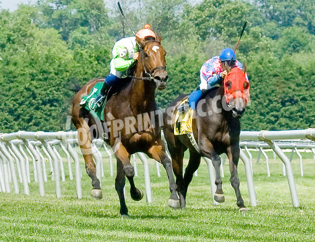 Pass or Play winning at Delaware Park on 6/17/12