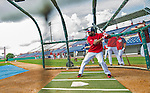 22 February 2013: Washington Nationals' outfielder Denard Span takes batting practice during a full squad Spring Training workout at Space Coast Stadium in Viera, Florida. Mandatory Credit: Ed Wolfstein Photo *** RAW File Available ***