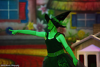 (CDJT) Spotlight Images - The Wizard of Oz