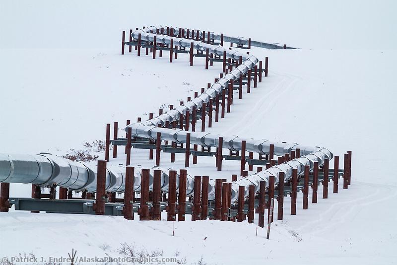Trans Alaska Oil pipeline traverses the snowy tundra of the Arctic North Slope, Alaska.