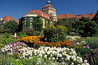 Deutschland, Bayern, Oberbayern, Muenchen: Botanischer Garten und Botanische Staats-Sammlung | Germany, Bavaria, Upper Bavaria, Munich: Botanical Garden