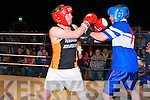Rumble in Listowel : The boxers who took part in the white collar boxing charity event organized by the Kerry Crusaders in The Listowel Community Centre on Friday night last.