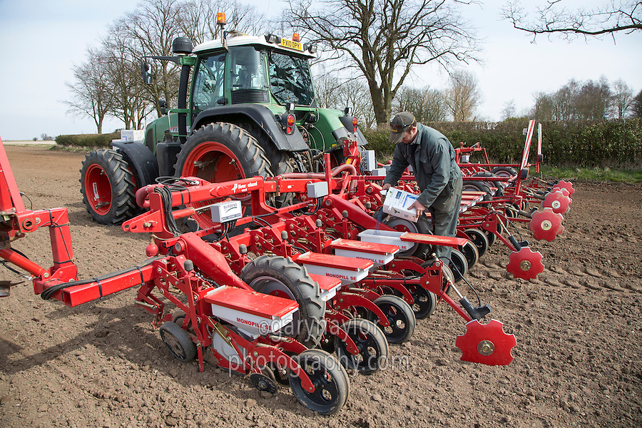 Filling a sugar beet drill units with seed