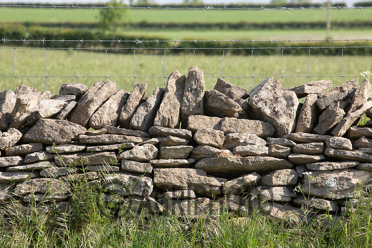 19.5.2020 Dry stone wall<br /> ©Tim Scrivener Photographer 07850 303986<br />      ....Covering Agriculture In The UK....