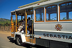 Sebastiani Tour Bus & Vineyards, Sonoma, Sonoma County, California