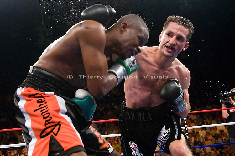 Uncasville, CT - June 7th, 2008: Sergio Mora (black trunk) on the attack against Vernon Forrest during their WBC Super Welterweight Championship fight at the Mohegan Sun Casino. Mora upset Forrest by taking his belt away with a split decision. Photo by Thierry Gourjon.