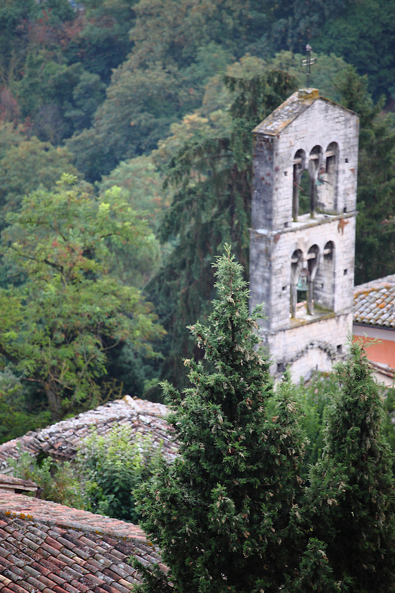 A particular in the panorama from Todi's terrace: the beautiful bell-tower of the ancient church of Saint Carlo (or Saint Ilario), on the background of green trees. Digitally Improved Photo.