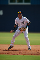GCL Yankees East first baseman Starlin Paulino (10) during a Gulf Coast League game against the GCL Phillies East on July 31, 2019 at Yankees Minor League Complex in Tampa, Florida.  GCL Yankees East defeated the GCL Phillies East 11-0 in the first game of a doubleheader.  (Mike Janes/Four Seam Images)