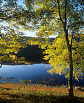 Autumn colors along the Delaware River, Delaware Water Gap National Recreation Area, Pennsylvania, USA.