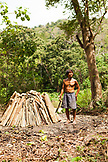 PHILIPPINES, Palawan, Barangay region, Batak man Rudolfo de la Cruz makes charcoal in the small village Purok Tarabidan